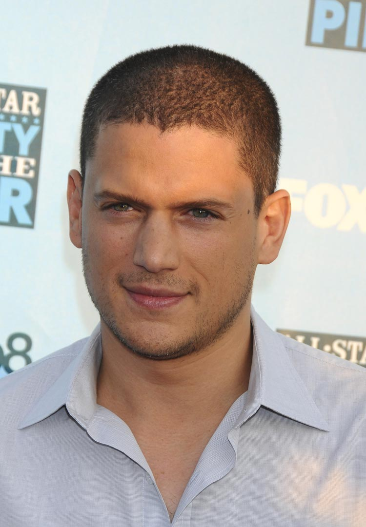 wentworth-miller-fox-networks-2008-summer-tca-party-gq-01 ...